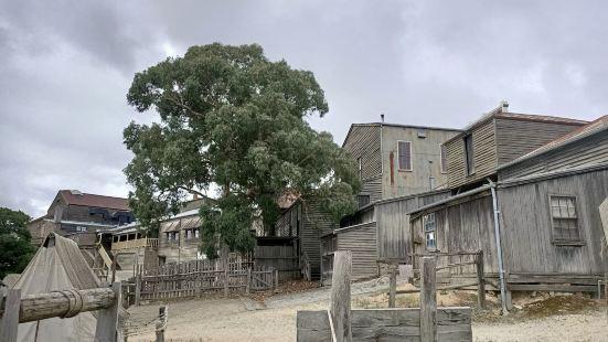 十九世纪中叶因为淘金而兴起的小镇,快速发展成一个三百多万人口