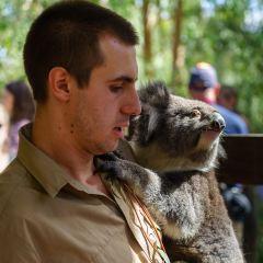Gorge Wildlife Park User Photo