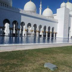 謝赫扎耶德清真寺用戶圖片