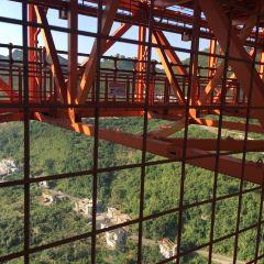 壩陵河大橋用戶圖片