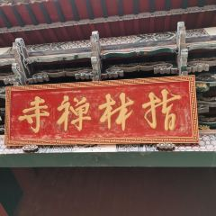 Yunwosi User Photo