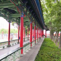 白塔山公園-法雨寺用戶圖片
