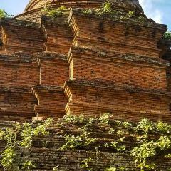 白龍王廟張用戶圖片