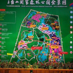 三台山國家森林公園用戶圖片