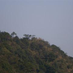 青山國家森林公園用戶圖片