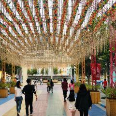 Qingdao Fantawild Dreamland User Photo