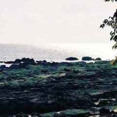 維桑海灘用戶圖片