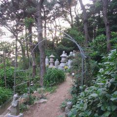 달맞이동산 여행 사진