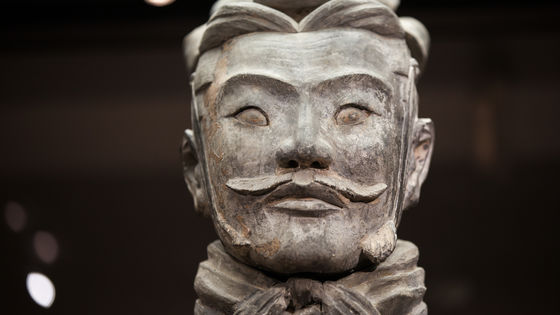 Xi'an Private Day Tour to Terracotta Warriors and Big Wild Goose Pagoda