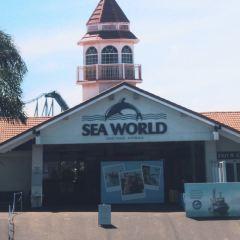 黃金海岸海洋世界用戶圖片