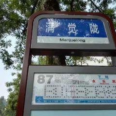Children's Park User Photo
