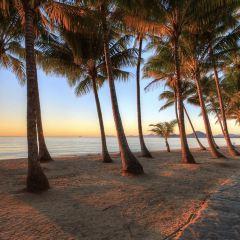 棕櫚灣用戶圖片