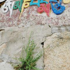 드레풍 사원 여행 사진