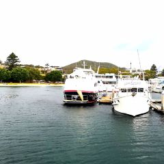 Port Stephens User Photo