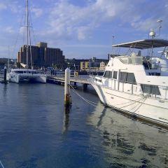 Victoria Dock User Photo