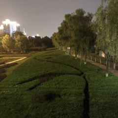 Weihe Park User Photo
