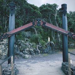 朗伊托托島用戶圖片