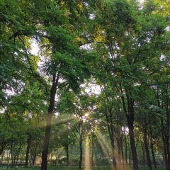 Changhe Park User Photo