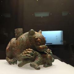 Gansu Provincial Museum User Photo