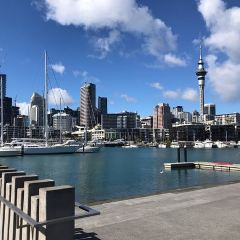 Viaduct Harbour User Photo