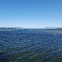 Mono Lake User Photo