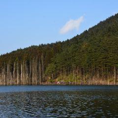 月亮湖用戶圖片