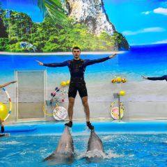 Dolphins Bay Phuket User Photo
