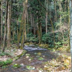 Akiyoshi-do User Photo