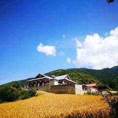 Bameizhen User Photo