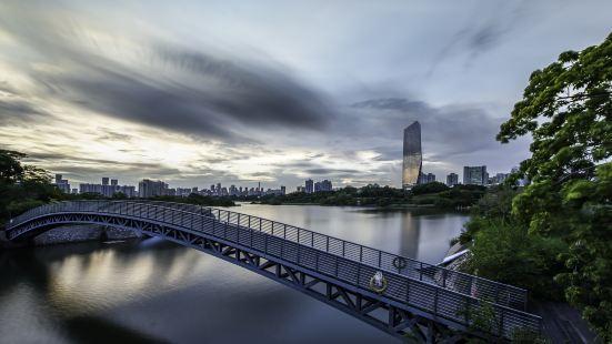 華僑城濕地公園