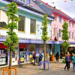 Gamle Bergen User Photo
