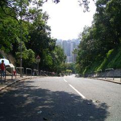 香港仔郊野公園用戶圖片