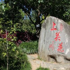 Shangguan Flower Park User Photo