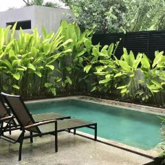 SPA Cenvaree at Centara Villas Phuket User Photo