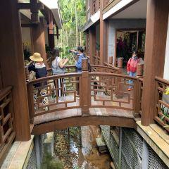 Yalong Bay Tropical Paradise Forest Park User Photo