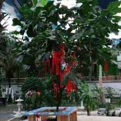 중국온천박물관 여행 사진