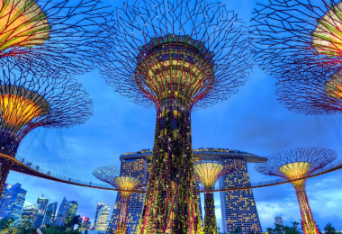 What You Should Know about Singapore VTL