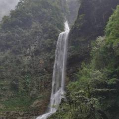 三峽竹海用戶圖片