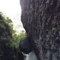 야시아쿠 풍경구 여행 사진