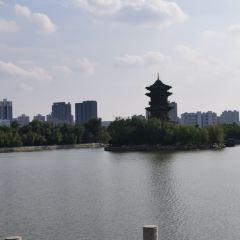 迎澤公園用戶圖片
