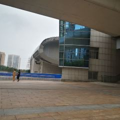 Tianjin Museum User Photo