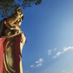 중구 케이블카 여행 사진