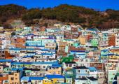사계절의 매력을 담고 있는 부산 알짜배기 가이드북