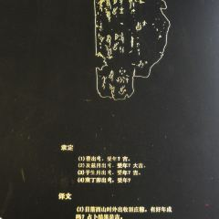 Yinxu Oracle Bone Stele Forest User Photo