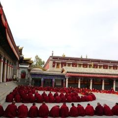The Great Lama's Residence User Photo