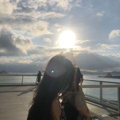 海港城美術館用戶圖片