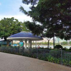 白鷺洲公園音樂廣場用戶圖片