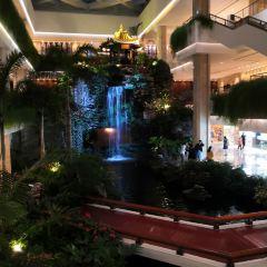 白天鵝賓館·美食屋張用戶圖片