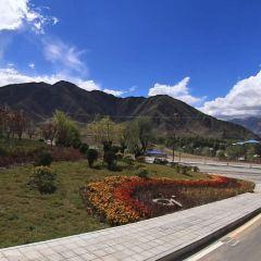 德陽村用戶圖片