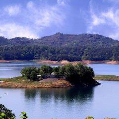 南灣湖風景區用戶圖片
